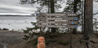 Andersön naturreservat