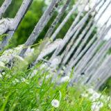 Gärdsgård på Frösön