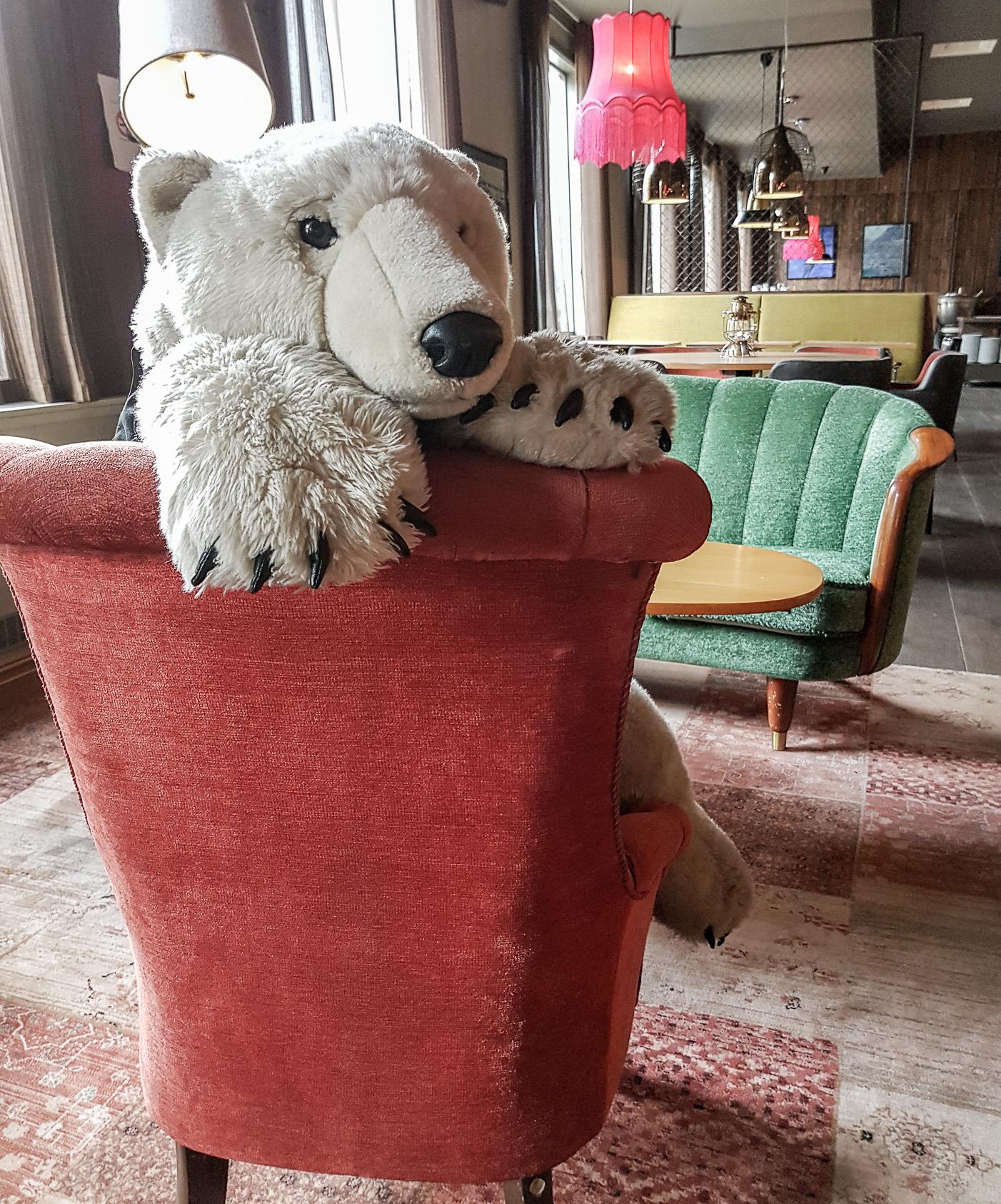 Isbjörn på vårt hotell