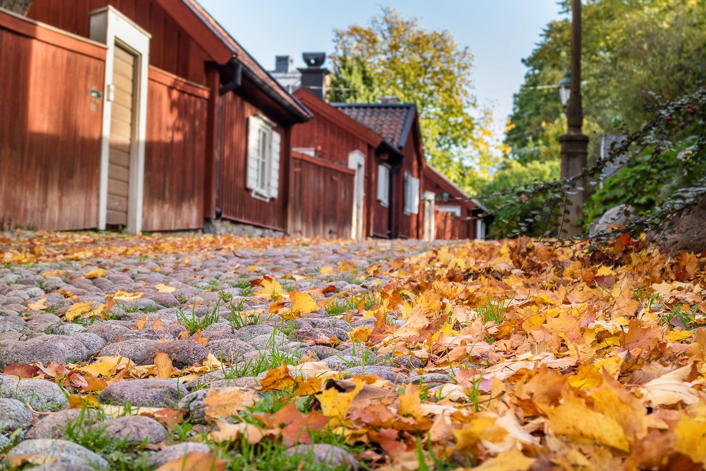 Lotsgatan på Söder i Stockholm
