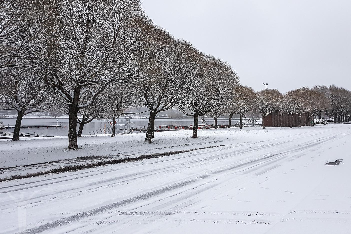 Vintervitt Frösön