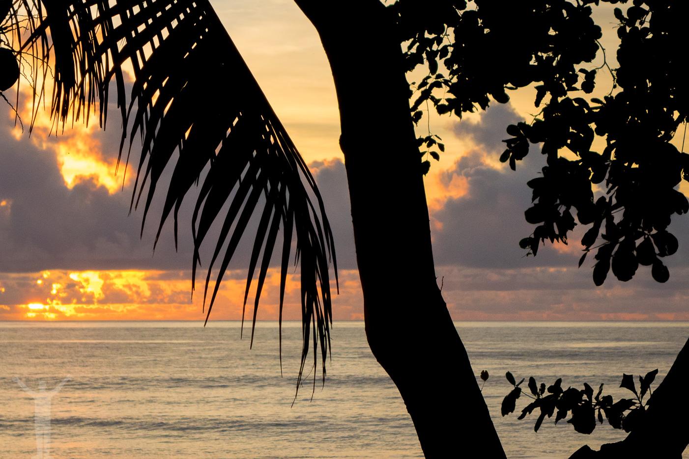 Solnedgång över Tamarina