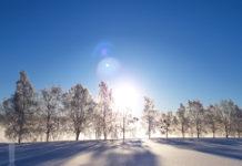 Vinterlandskap i Skärgår'n