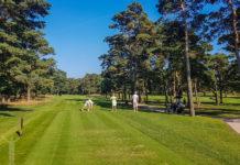 Golf i Åhus - tee