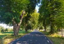 Roadtrip på Österlen