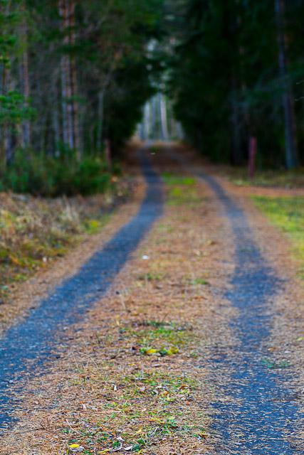 Grusväg på Andersön.