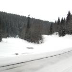 På väg mot Bydalen. Foto: Martin