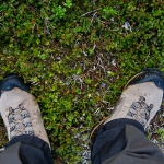Efter den steniga toppen var det skönt att sätta fötterna på mjukare underlag.