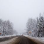 Snötyngda träd och saltade vägar