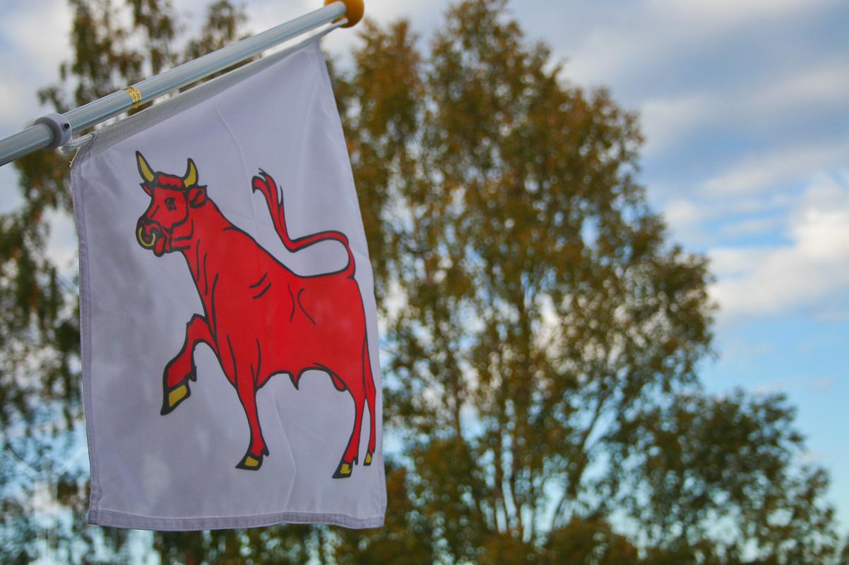 Dalslands landskapsflagga