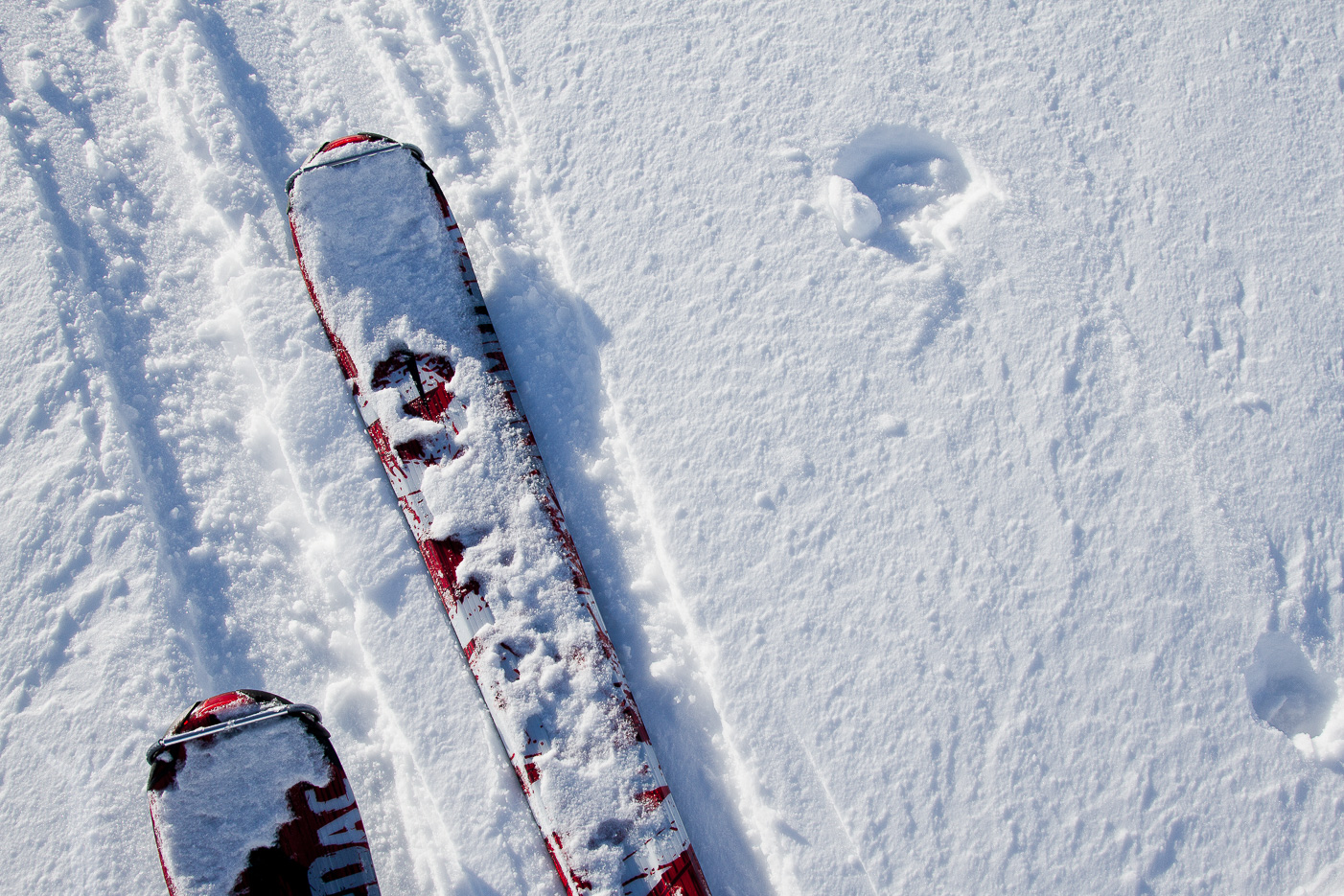 Skidor på Getryggen