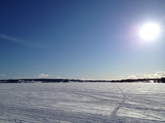 Kungsgårdsviken