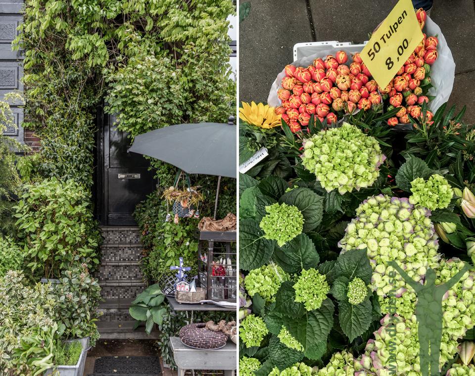Amsterdam - grönskan