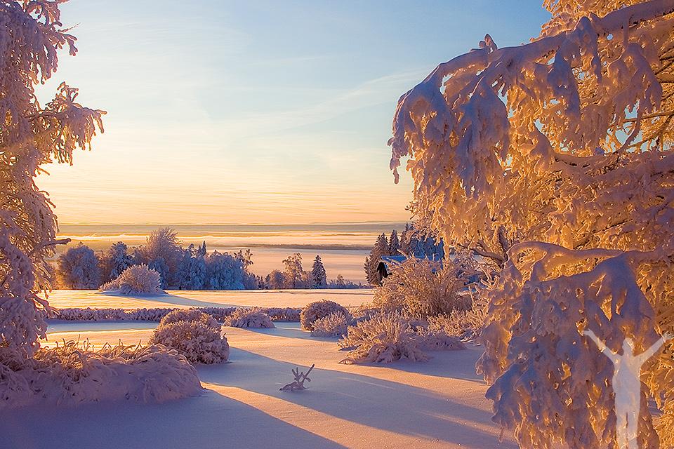 Midvinter i Jämtland