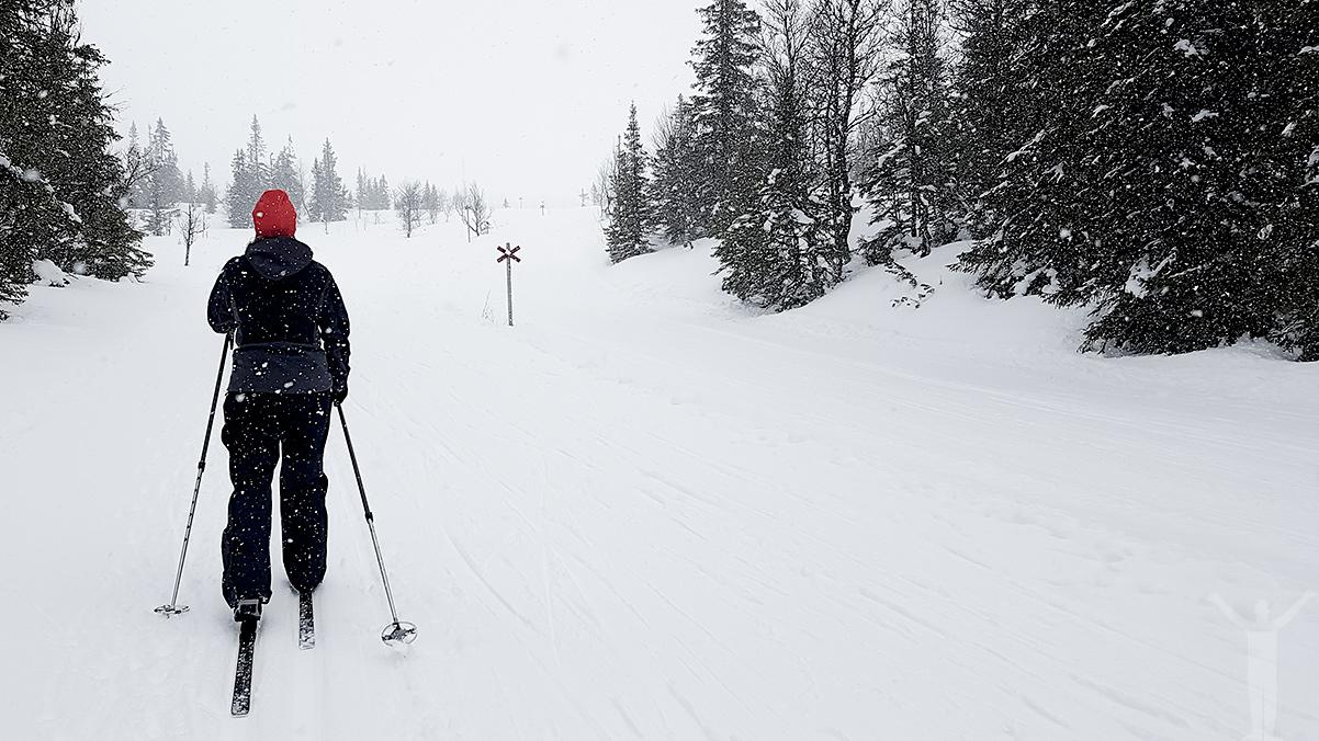 Skidor till Vita Renen