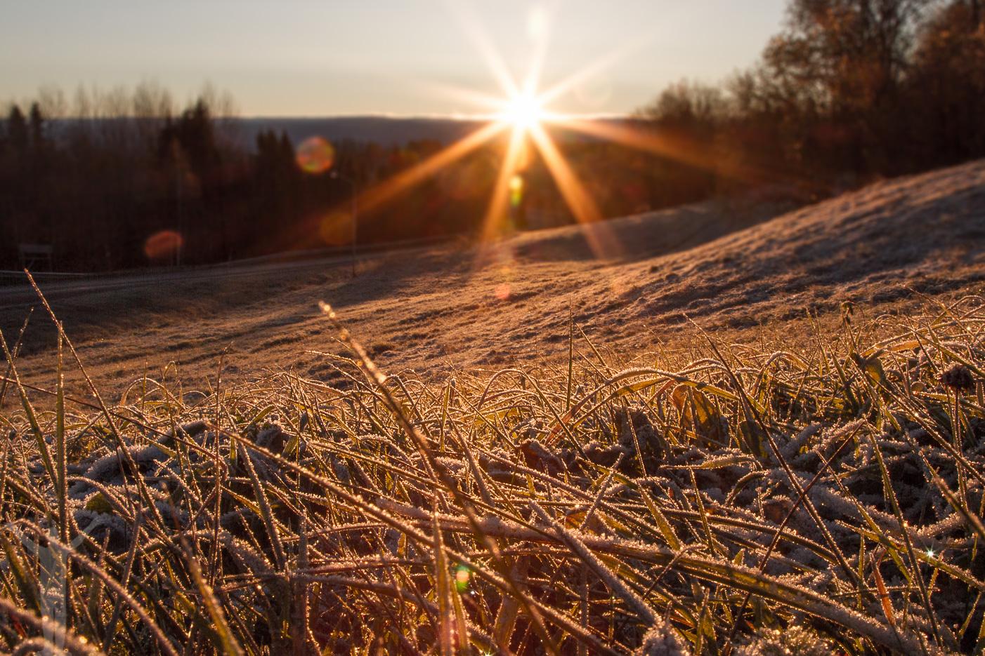 Soluppgång över Jämtland