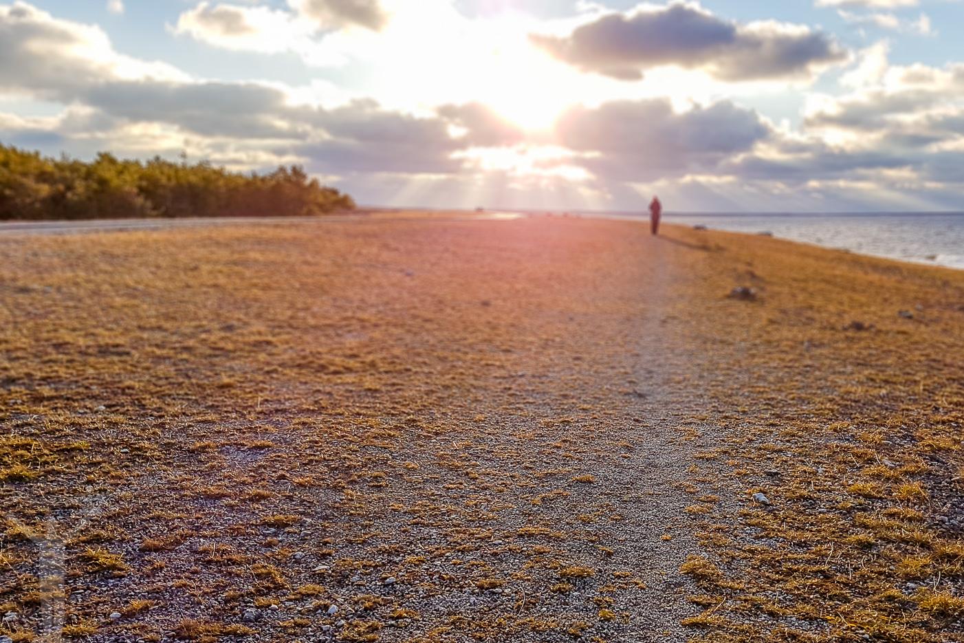 Turistfritt på Gotland