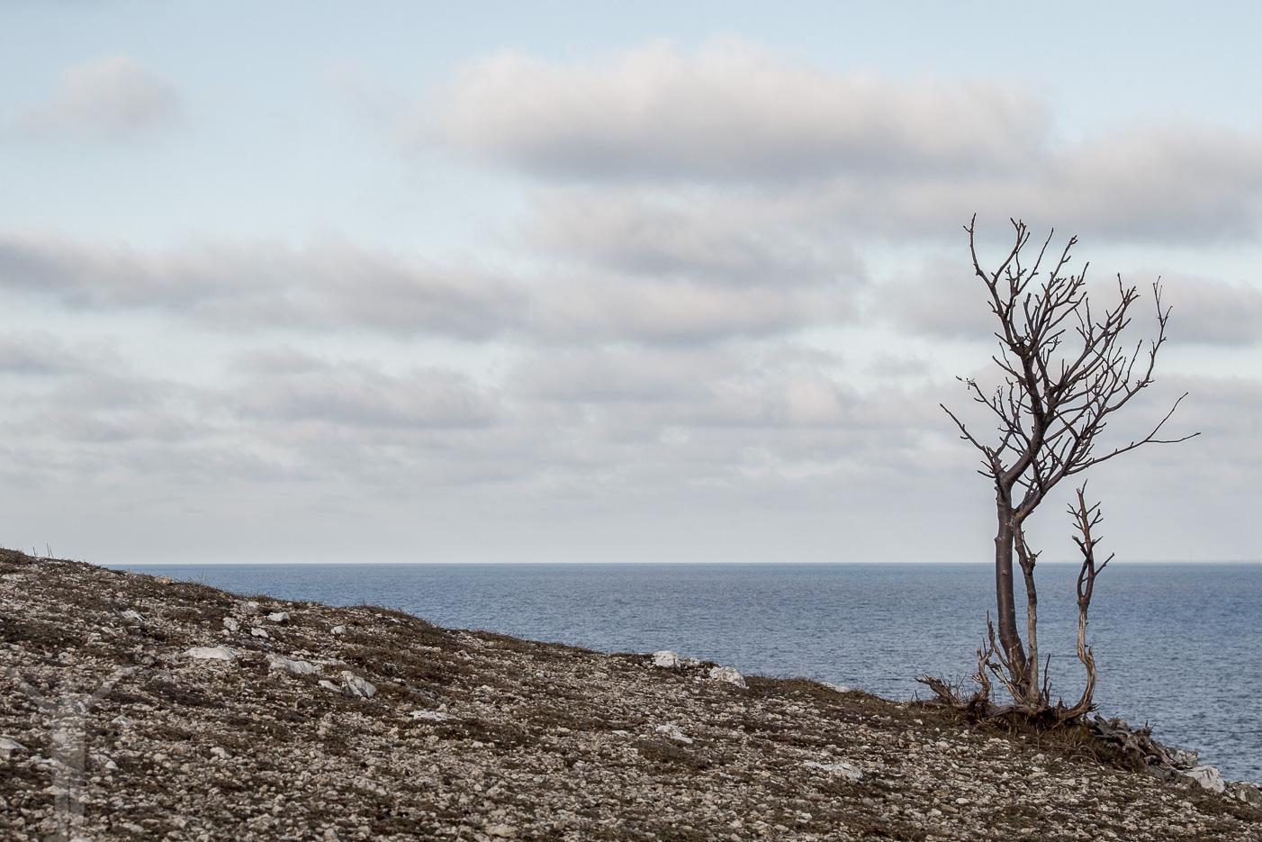 Gotland offseason