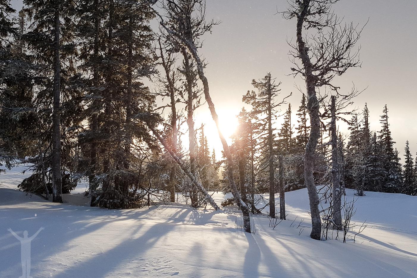 Jämtland och vinterlandskap