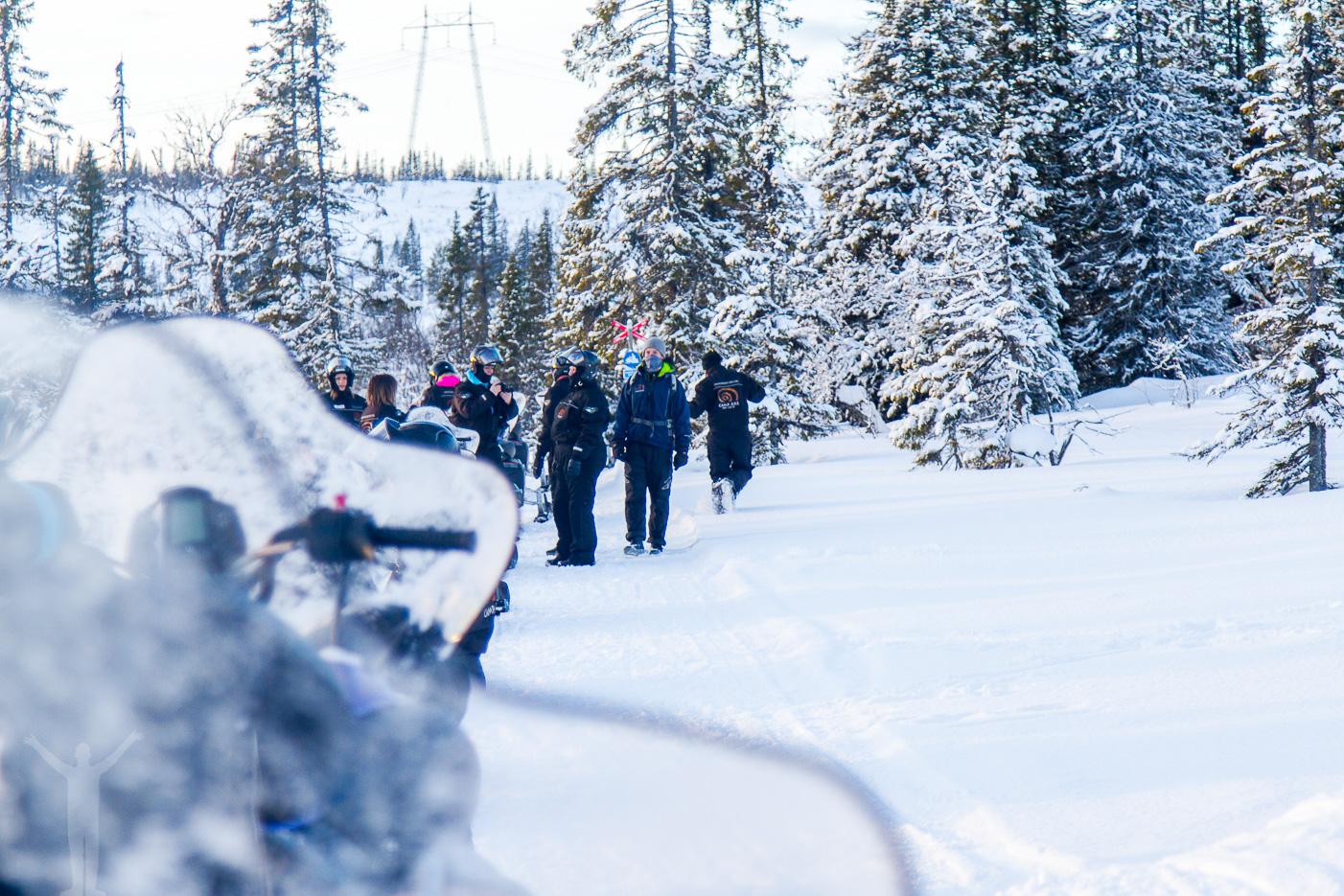 Skotersafari med Camp Åre