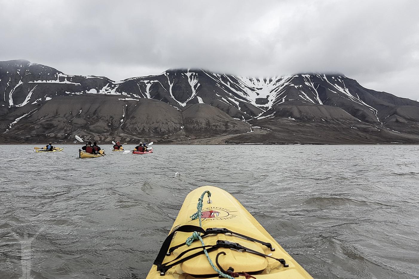 Kajakpaddling över Adventfjorden