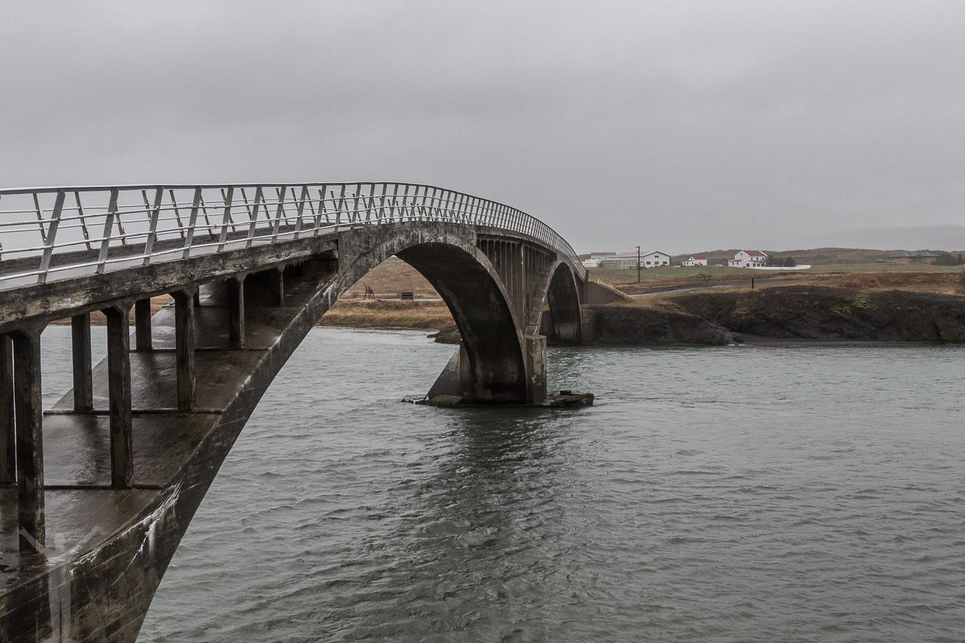Smal bro på Island