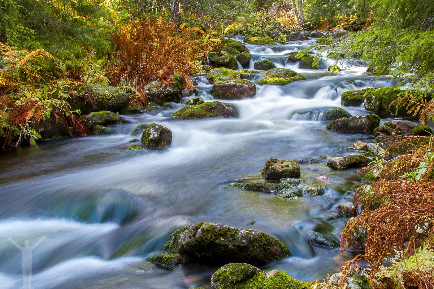 Forsande vattendrag vid Njupeskär