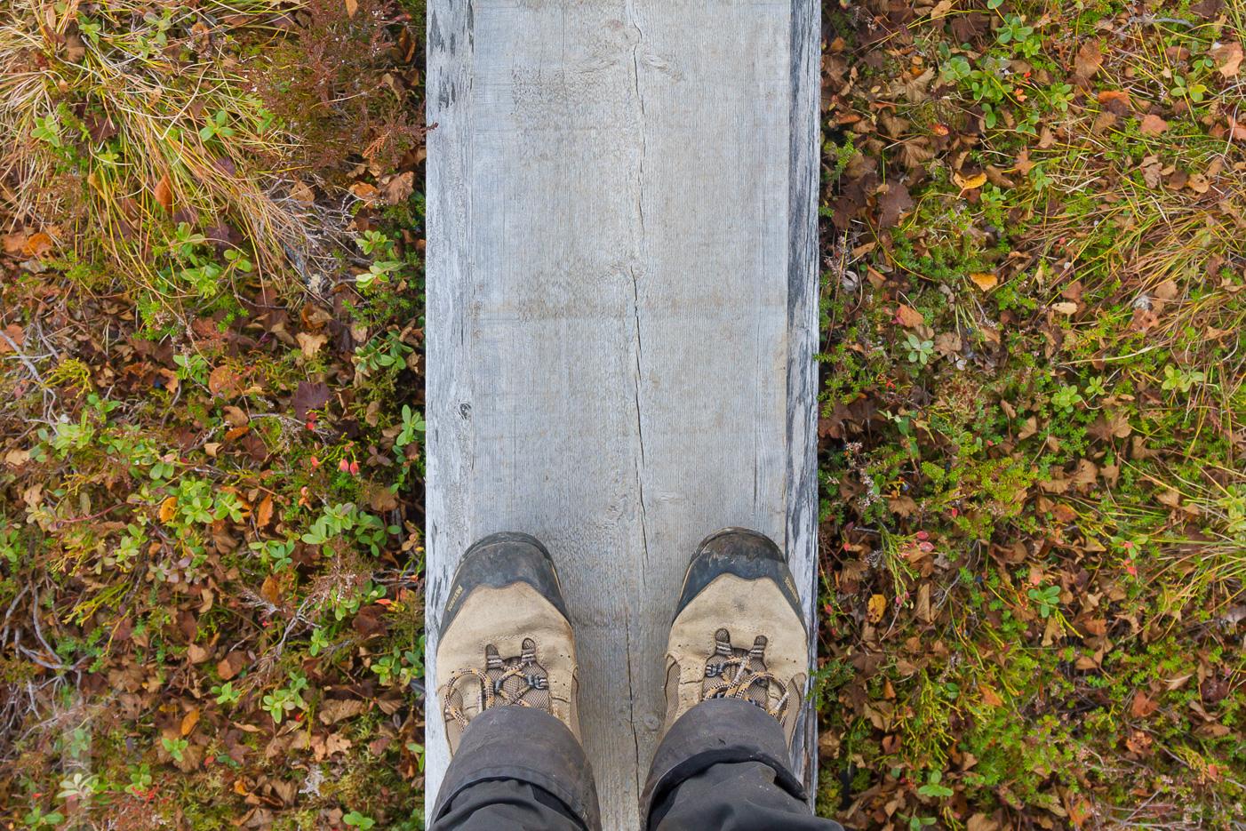 Meindlkängor och Jämtlands vandringsleder