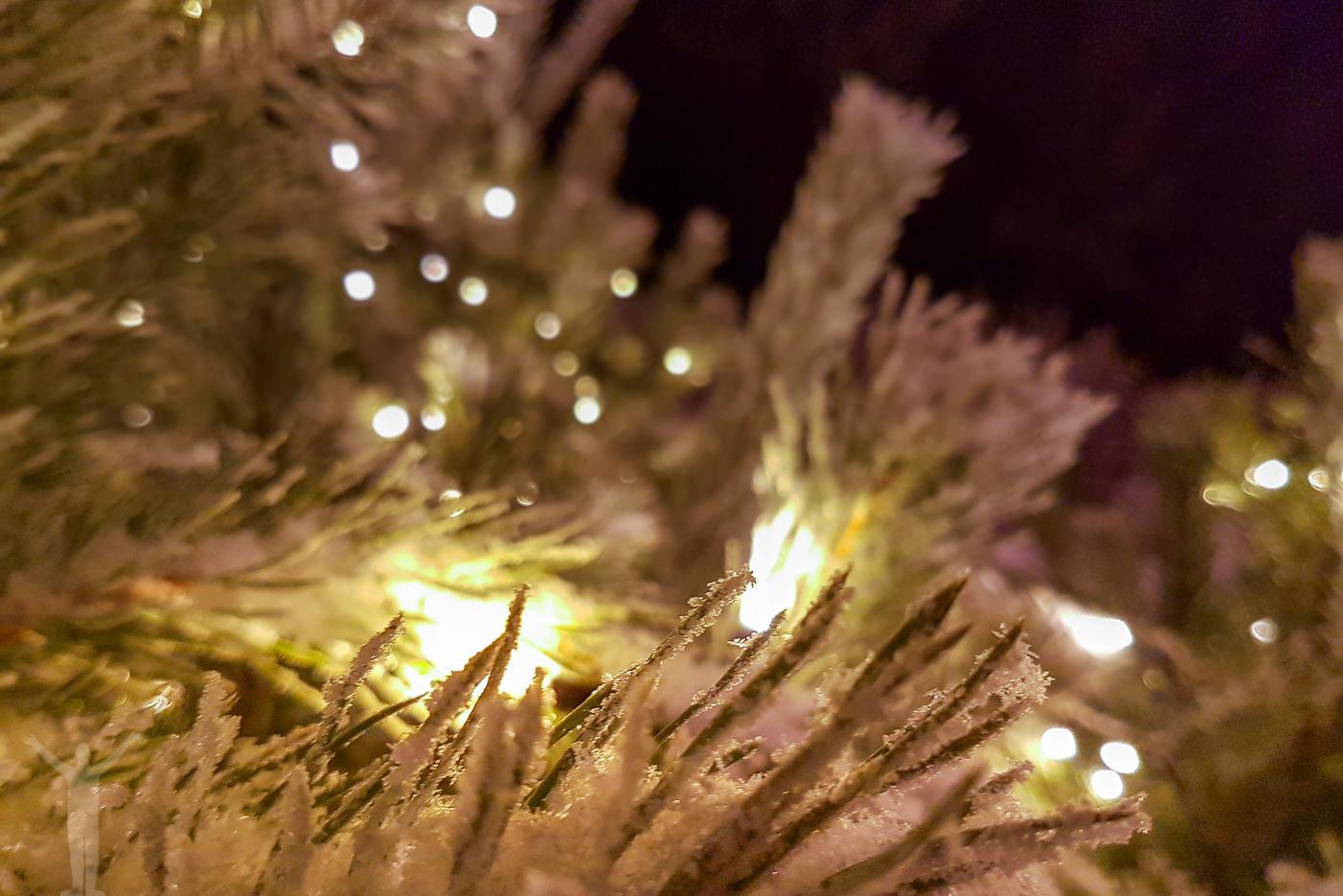 Julträd i Badhusparken