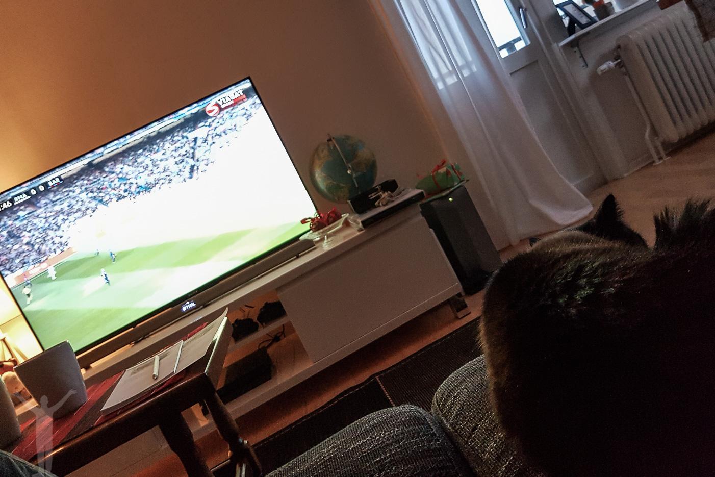Lördagssoft med fotboll och Zelda
