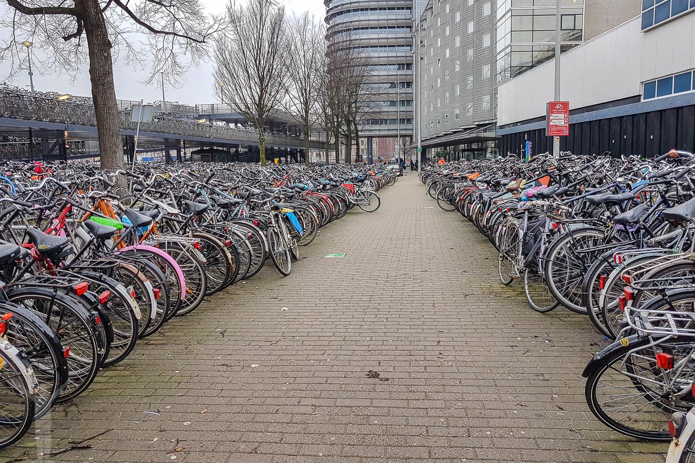 Hyr en cykel i Amsterdam