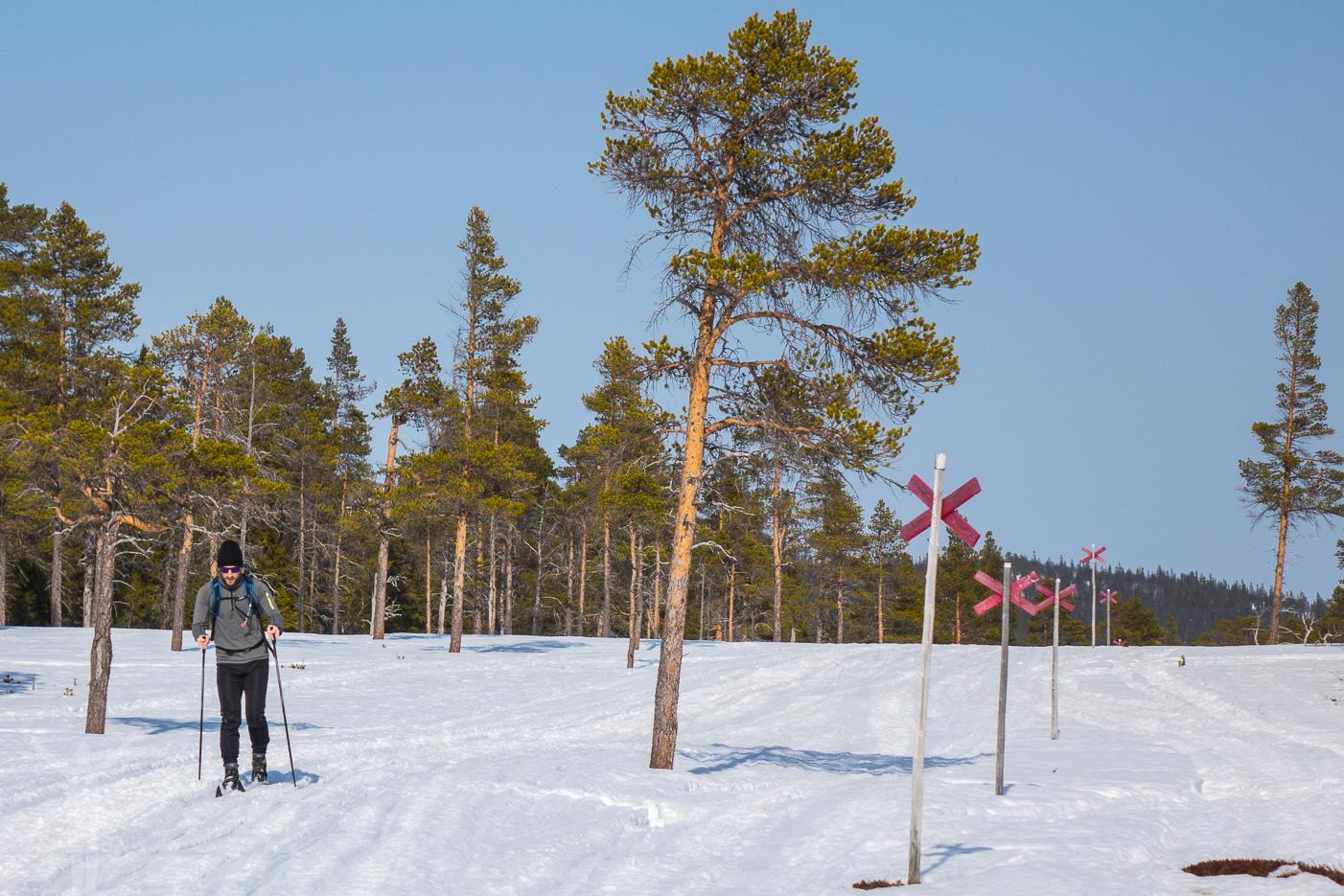 Turskidor i Jämtlandsfjällen