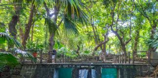 Casela naturpark på Mauritius