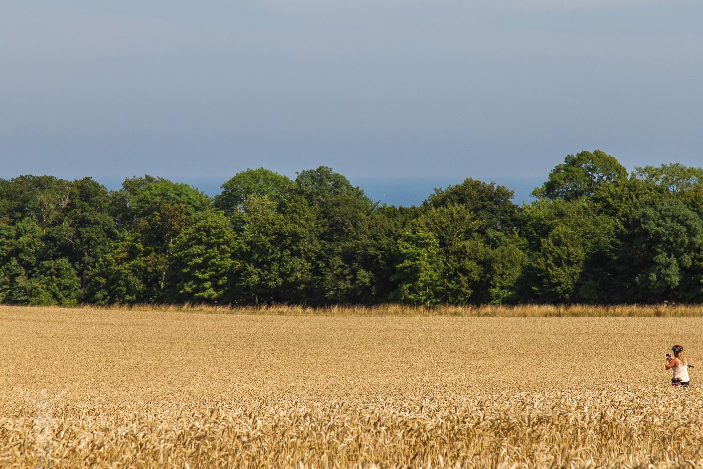 Bornholms böljande landskap