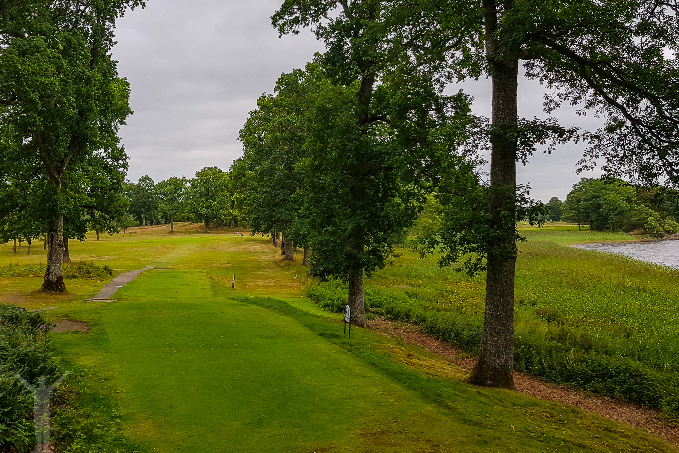 Golf på Koberg - tee på hål 4