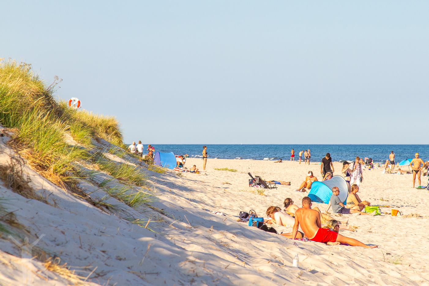 Sandhammaren - stranden
