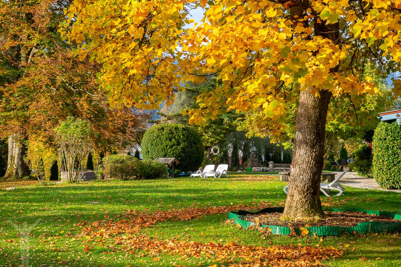 Trädgården på hotellet i Berchtesgaden