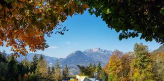 Lunch på Alpengasthof Vorderbrand