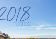 2018 - mest läst