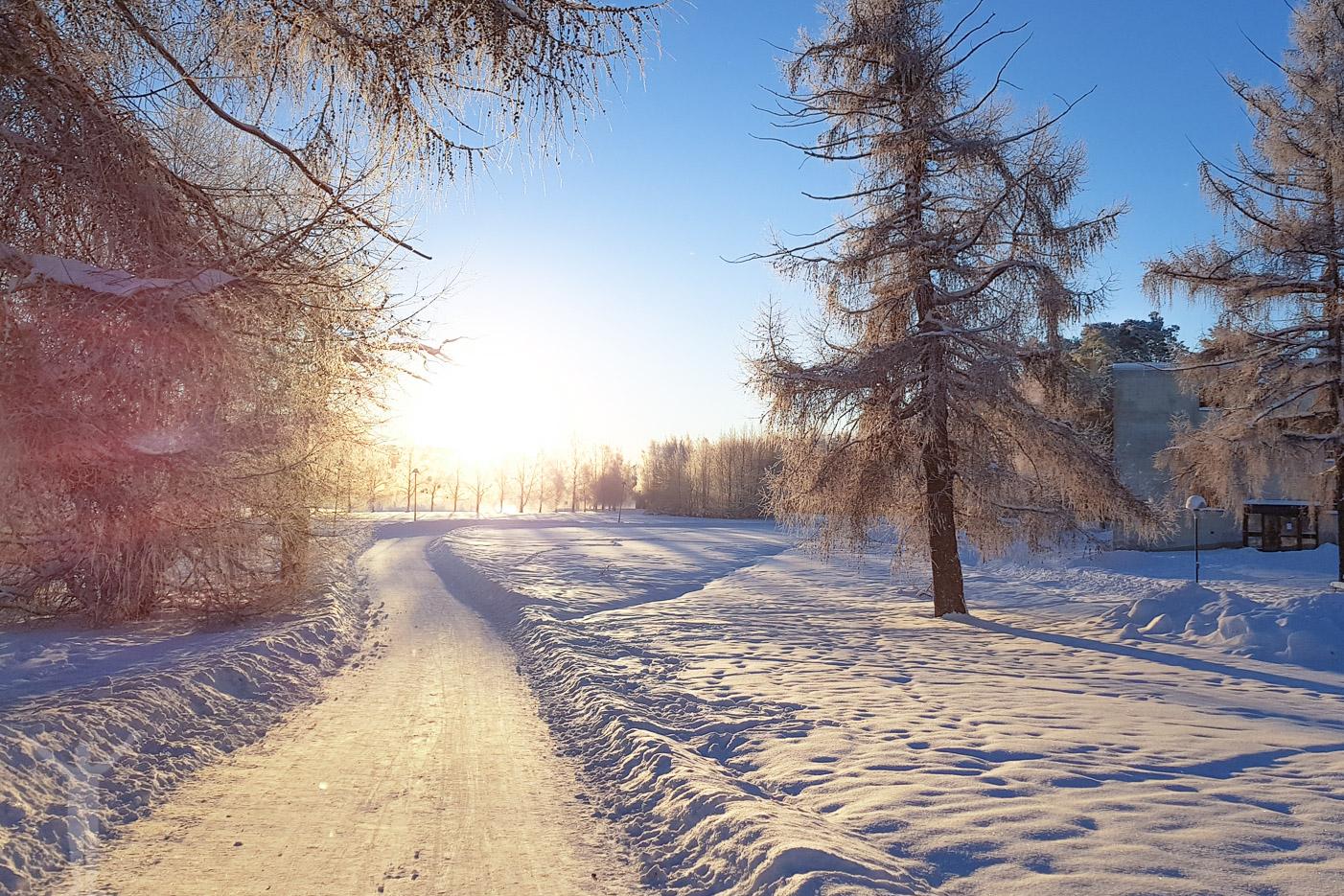 Härliga vinterpromenader!