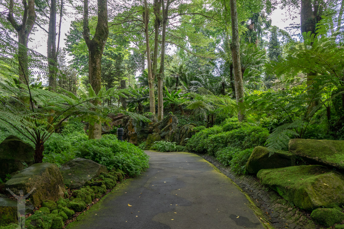 Härliga promenadstråk i lummiga oaser