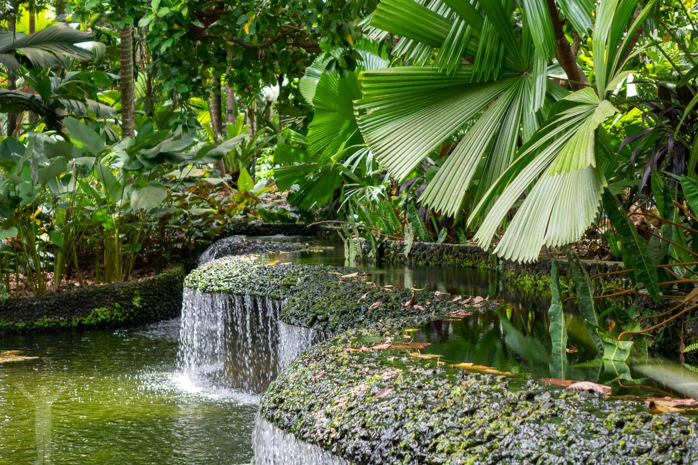 Vattenfall i Botanic Gardens