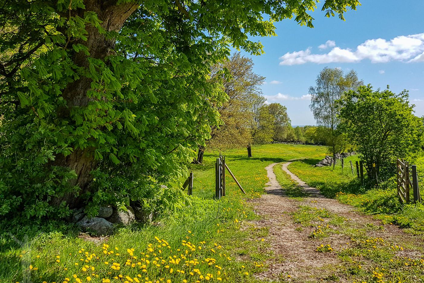 Natursköna Skåne