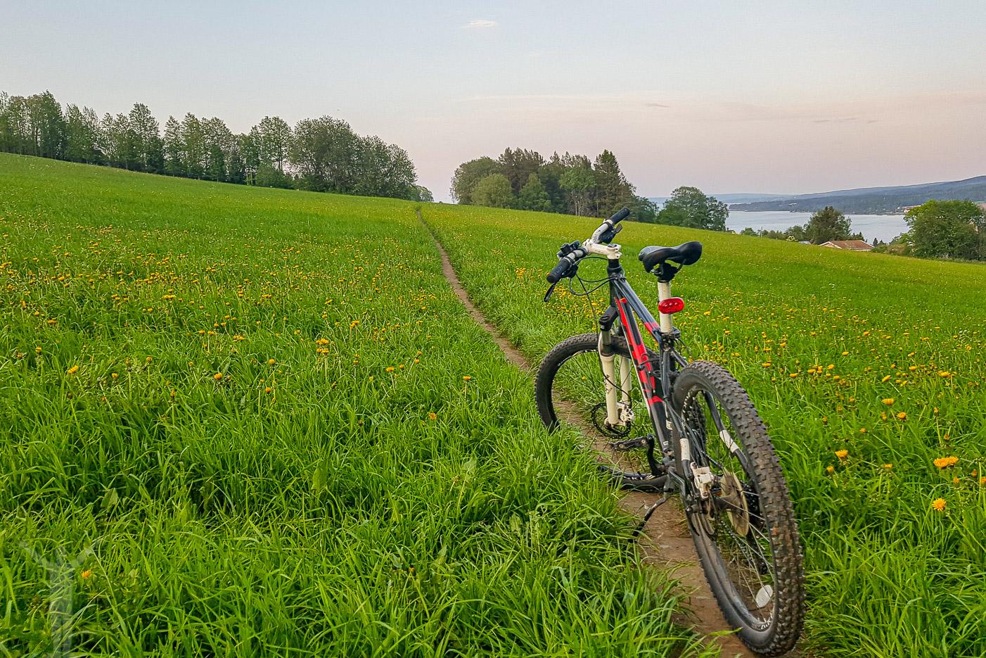 Cykla MTB på Frösön