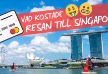 Vad kostade resan till Singapore?
