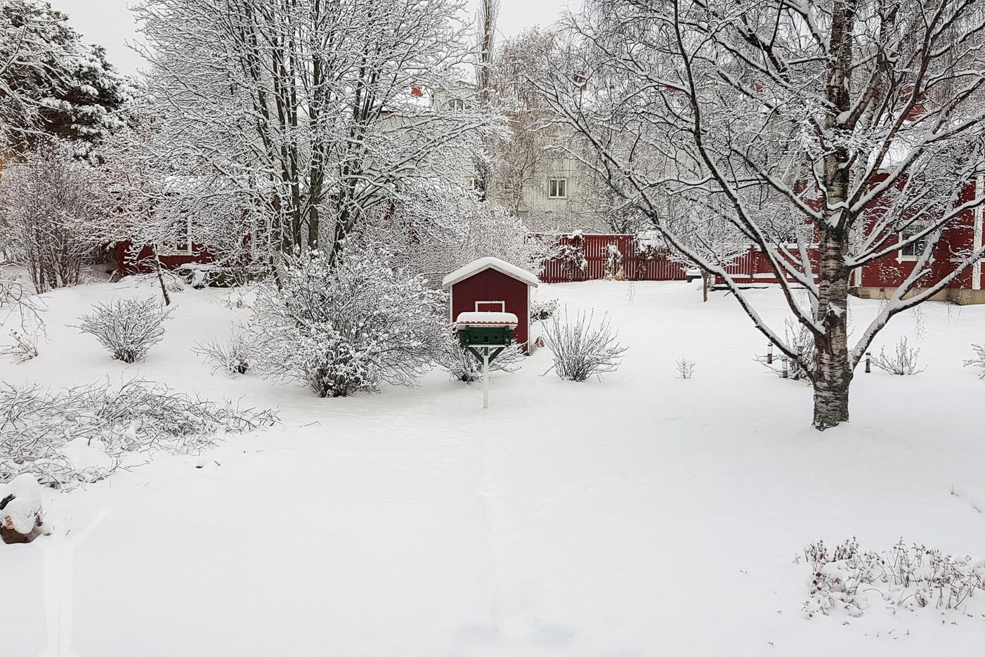 Vinter i Skärgår'n