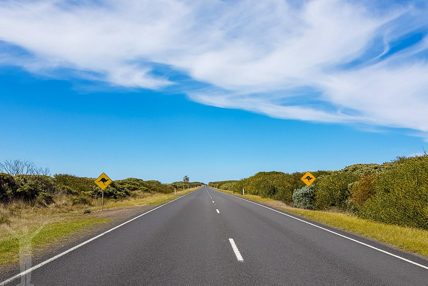 Guide till Great Ocean Road