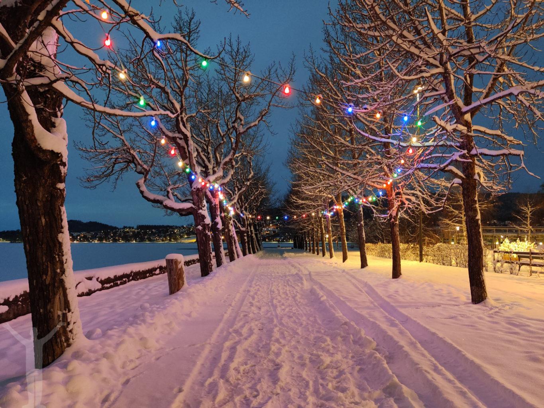 Kvällsljus i Badhusparken