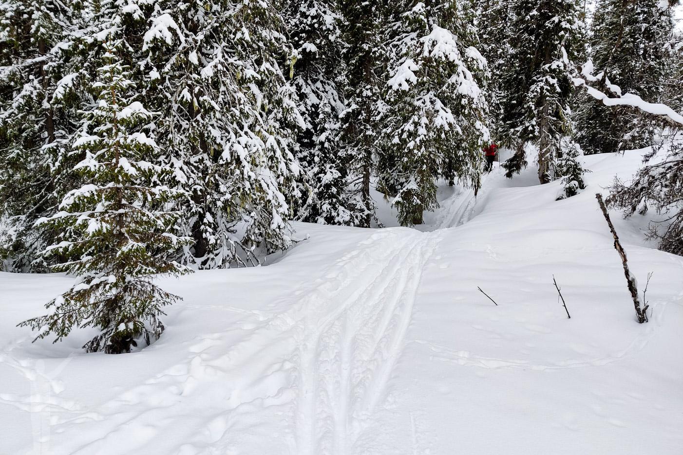 Skidor från Rundhögen
