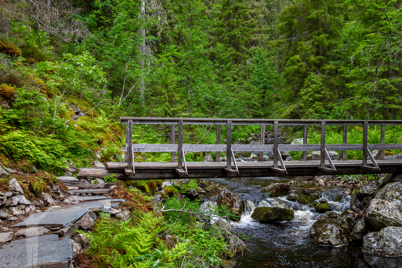 En bro över forsen